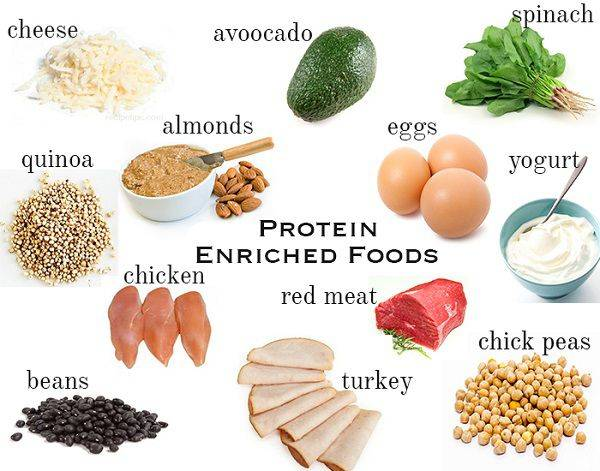 15 Enchanting High Protein Food To Eat For Healthy Living Review Mentor