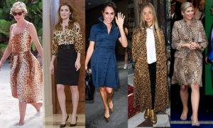 7 Celebrities who style in Leopard print